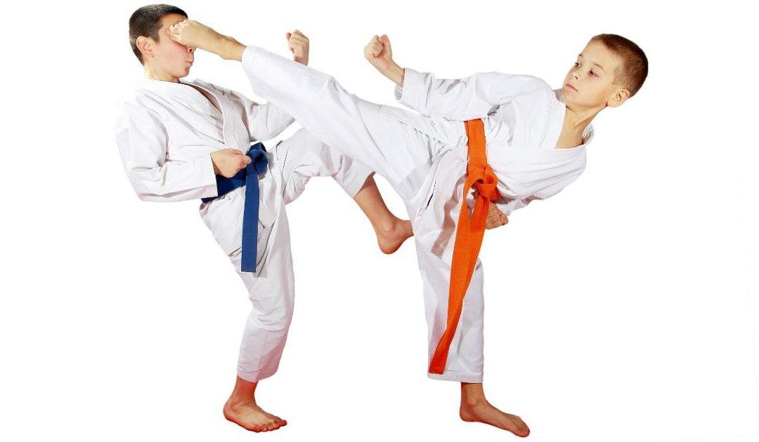 Inscriere curs karate sanpetru